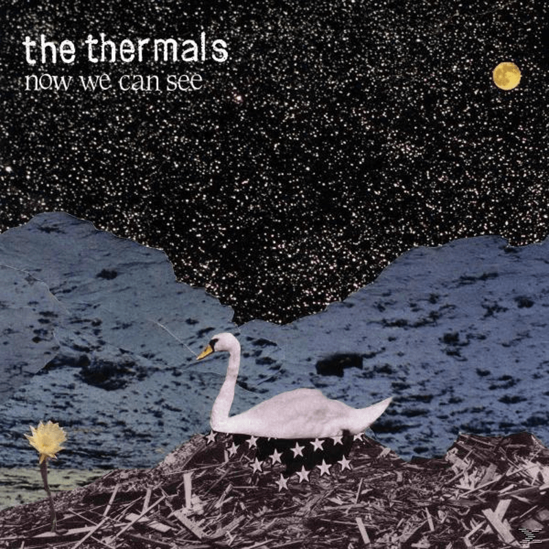 The Thermals - Now We Can See - (CD)
