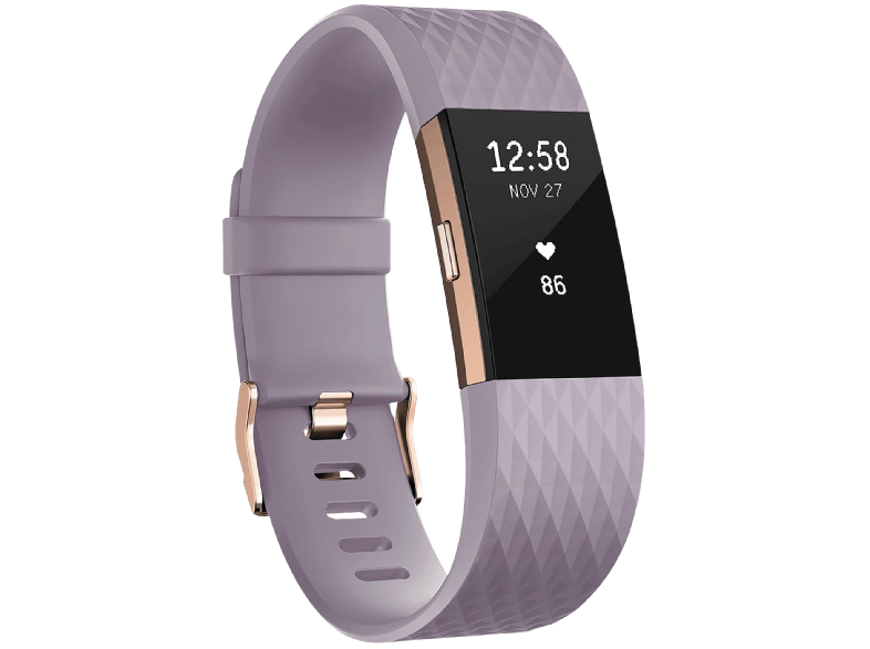 FITBIT Charge 2 Lavender Rose Gold Small EMEA - (FB407RGLVS-EU) activity trackers